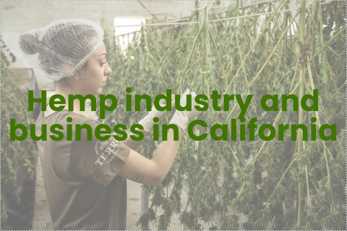 Understanding different aspects of the hemp industry and business in California
